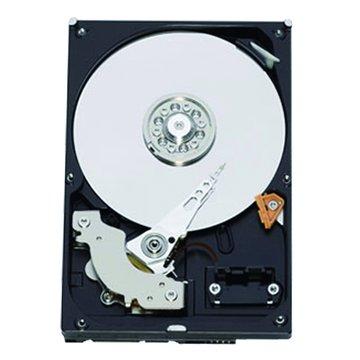 1TB 3.5吋 64MB 7200轉 SATAIII 裝機硬碟(WD10EZEX-2Y/P)