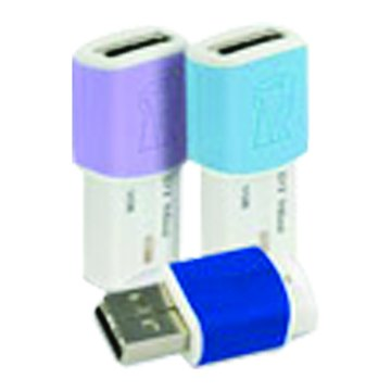 DataTraveler mini migo 1GB  隨身碟-